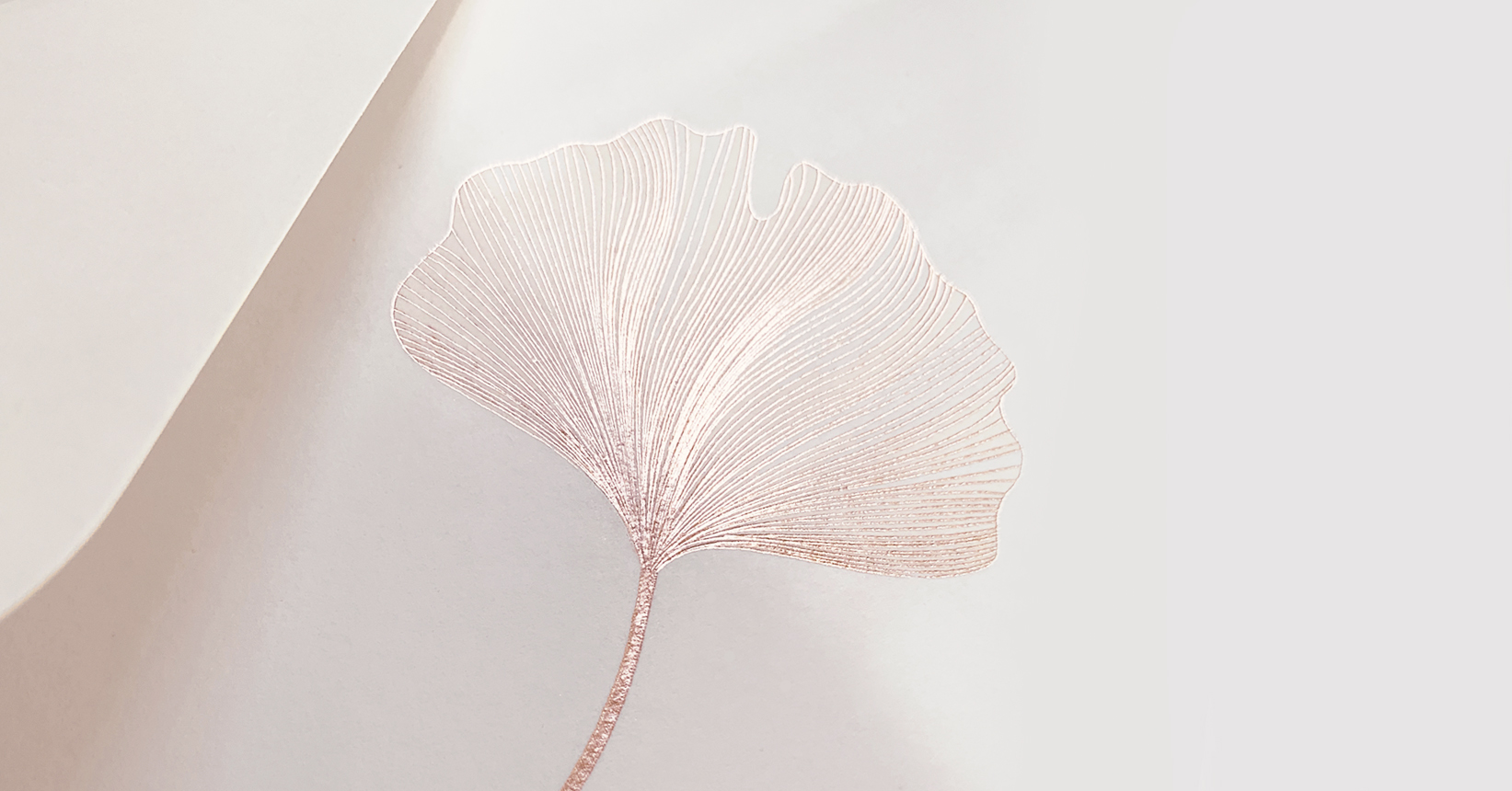 Helena Leaf Invitations